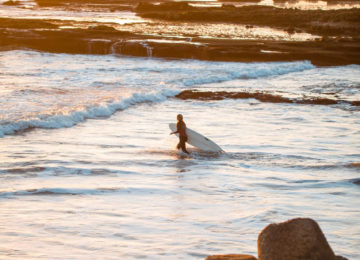 A woman pulls her board into the water in beautiful sunlight