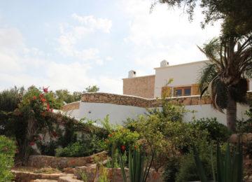 Der Garten der Unterkunft mit Palmen