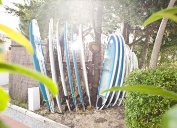 Selection of surfboards