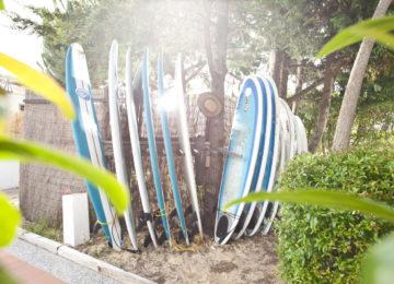 Auswahl von Surfbrettern