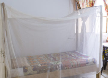 Single bed with mosquito net