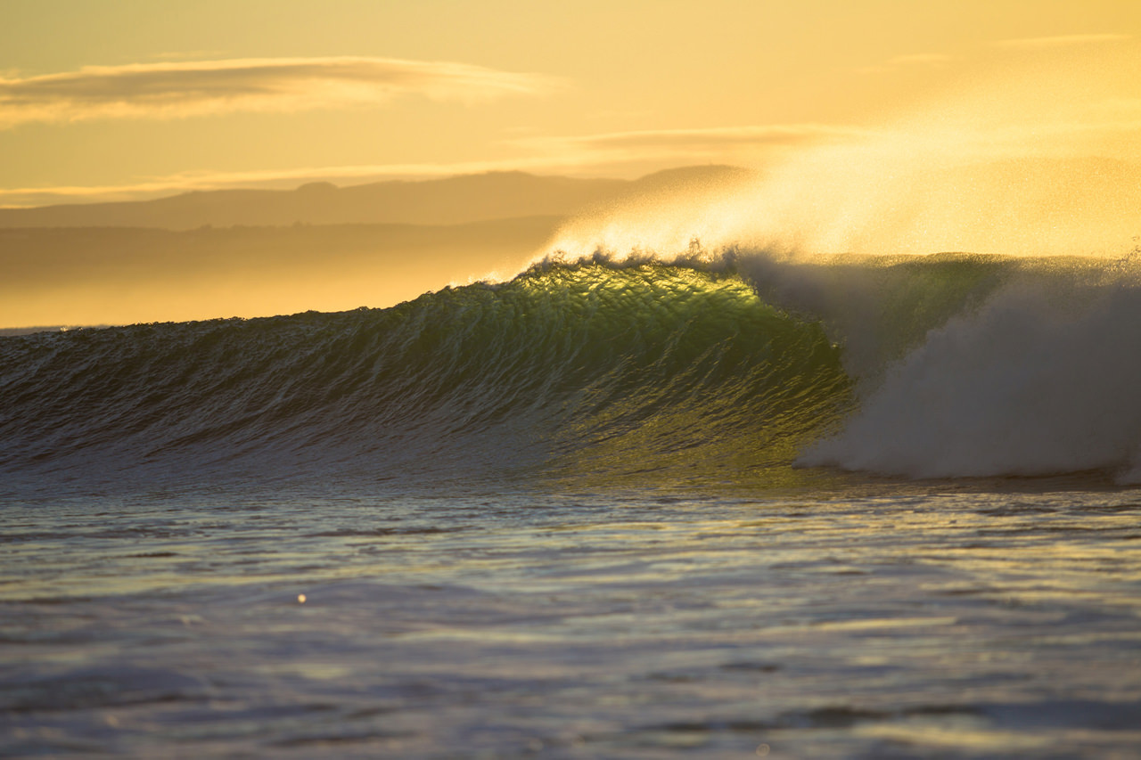 Beautiful wave in the evening sun