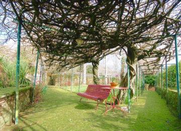 Garten mit Bank und Stühlen