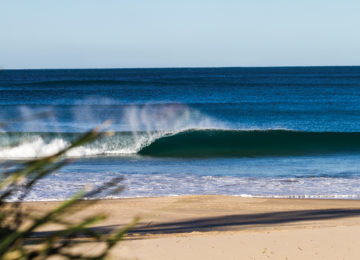 Lonely wave with barrel