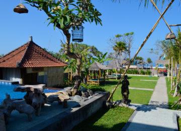 Garden area with pool at Sudden Rush Surf Resort Medewi