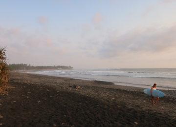 Surfer walks along the beach