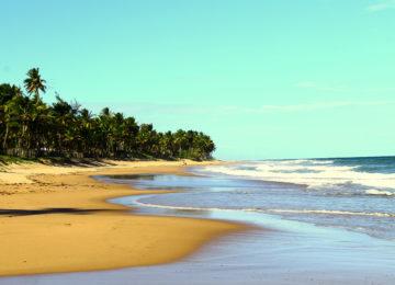 Surfstrand an der Bahia in Brasilien