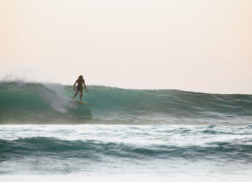 Single Fin Surf in the Moluccas