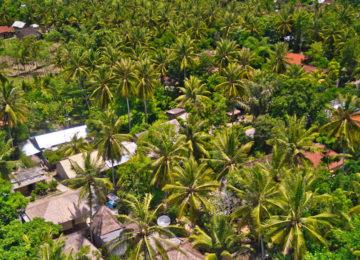 Blick auf Inselparadies Lombok