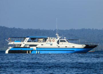 Mentawai Surfcharter Boot