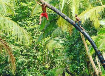 Sudden Rush Gast springt von Palme in Lagune