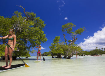 SUP Trip to the Mangroves on Red