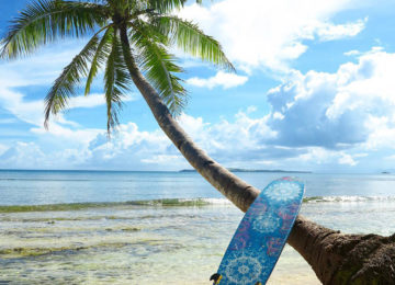 Surfboard on the beach with palm tree