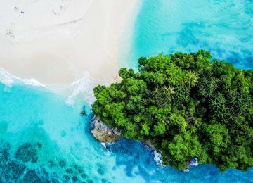 Vogelperspektive auf Strand und Palmen