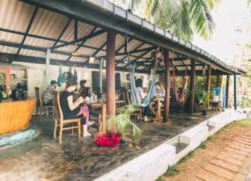 Café Surf and Yoga Camp in Mirissa