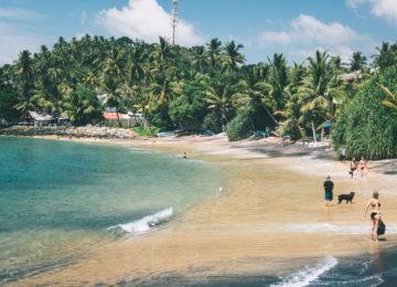 Sandstrand mit Palmen und türkis Wasser