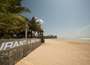 Beach at Sri Lanka Surf Camp in Ahangama