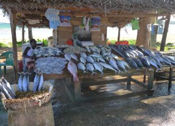 Fish sellers in Ahangama