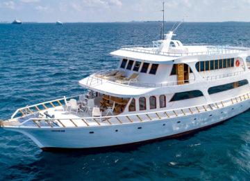 Blue Shark Surf Charter Maldives