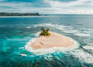 Einsame Insel mit Palme