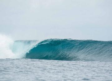 Perfekte Linkswelle ohne Surfer