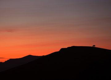 Sunset Sao Miguel