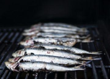 Fisch auf dem Grill