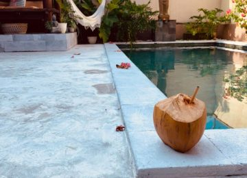 coconut in front of pool